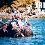 Экспедиция XR1RRC на остров Св. Марии, SA-069